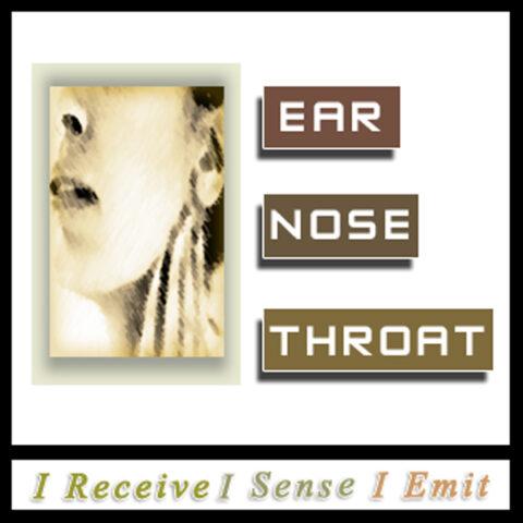 Ears Nose Throat Light Language Healing by Jamye Price