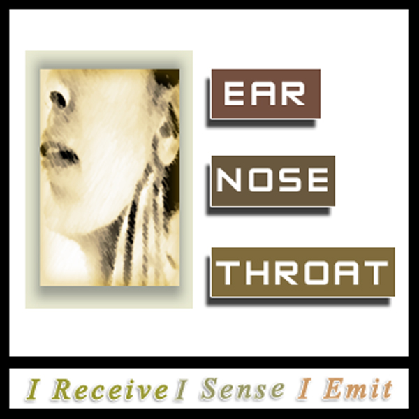 Ears Nose Throat Light Language Healing by Jamye Price