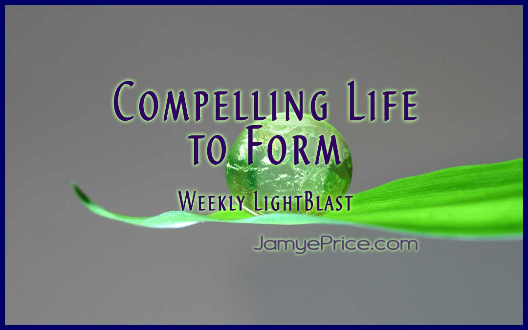 Compelling Life to Form by Jamye Price