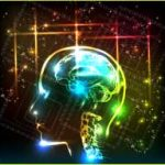 Brain Upgrades Ascension Energies by Jamye Price