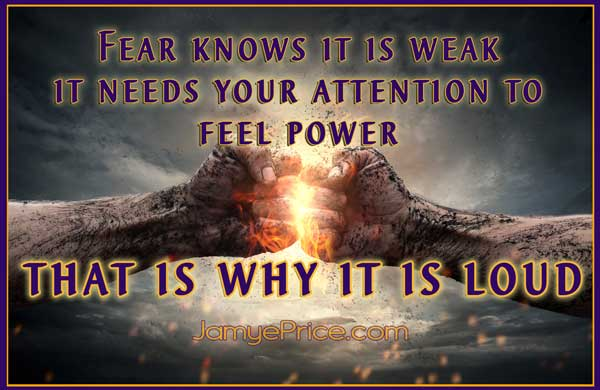 Fear Knows its Weak by Jamye Price