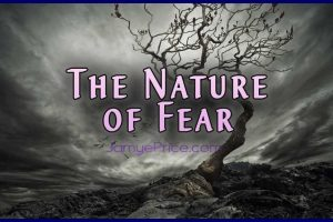 The Nature of Fear by Jamye Price