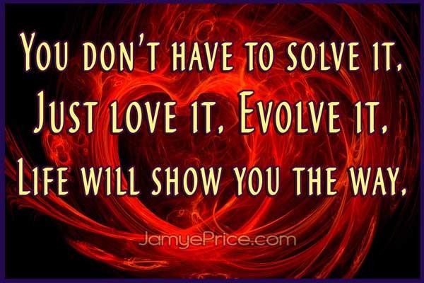 To solve it Love it Evolve it by jamye Price