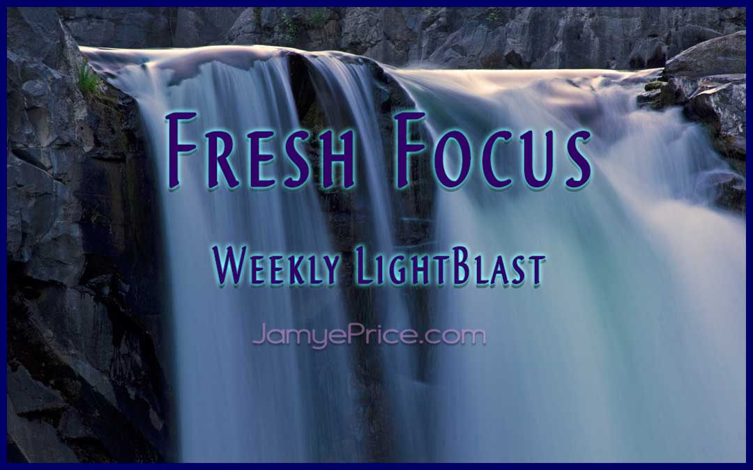 Fresh Focus LightBlast by Jamye Price