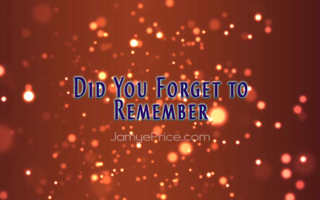 Did You Forget to Remember by Jamye Price