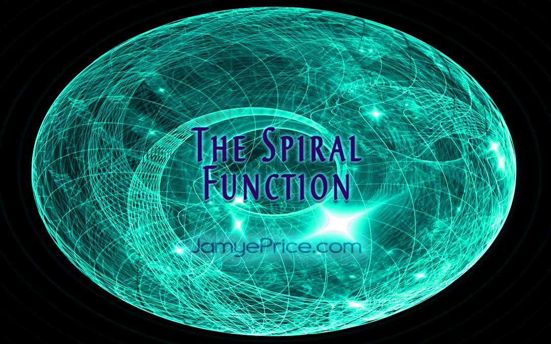 The Function of the Spiral by Jamye Price