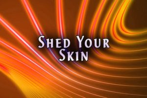 Shed Your Skin Article by Jamye Price